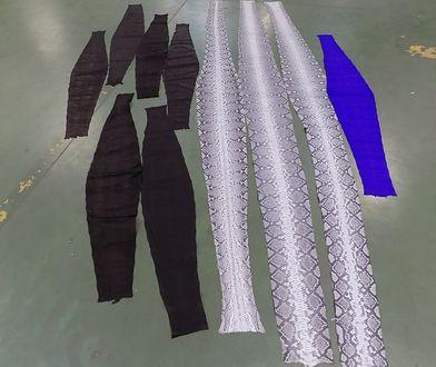 Mazowieccy celnicy zatrzymali nadaną z Indonezji paczkę ze skórami pytona zagrożonego wyginięciem