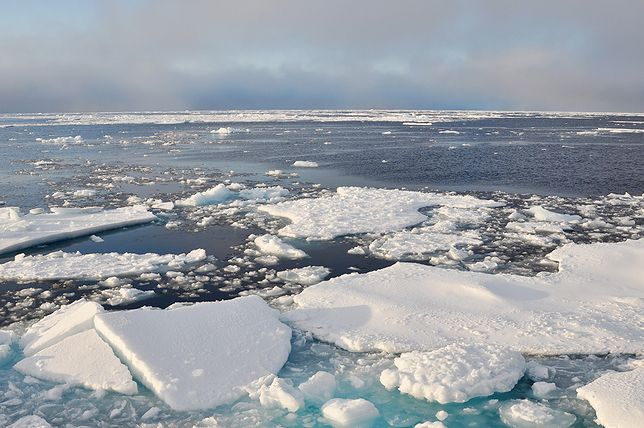Antarktyda topnieje