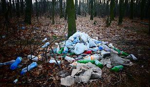 Śmieci to niestety wciąż popularny widok w lasach