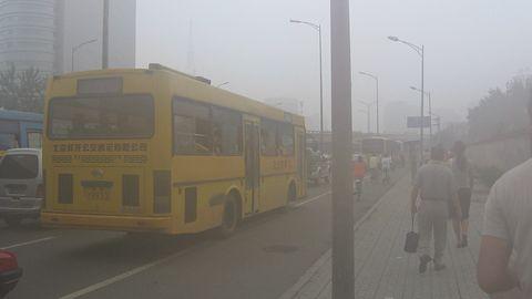 Obawiasz się smogu? Sprawdź aktualny poziom zanieczyszczenia w aplikacji GIOŚ