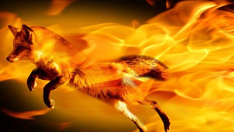 Mozilla zmienia Firefox Sync - będą problemy z kompatybilnością