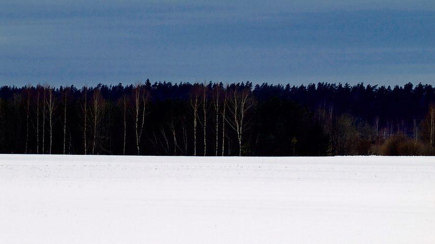 Estońskie barwy narodowe: krajobraz inspiracją dla flagi? (źródło: Wikimedia)