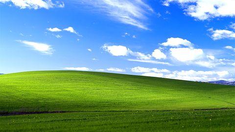 """Autor tapety """"Bliss"""" z Windowsa XP przygotował tła dla smartfonów"""