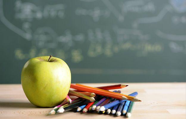 Pięciolatki w szkole? Pomysł czeskiej minister