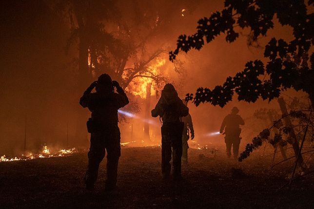 Pożary w USA. Gubernator Kalifornii Gavin Newsom wprowadził stan wyjątkowy