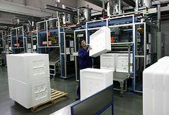 Wolne miejsca pracy są głównie w firmach prywatnych