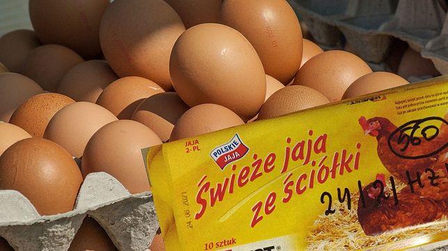 Jaja skażone salmonellą