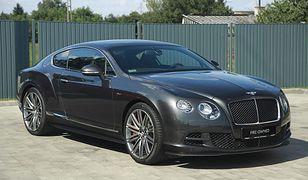 Bentley Continental GT Kuby Wojewódzkiego