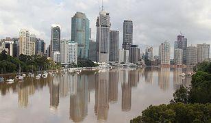 Rekiny pływają ulicami zalanych przez powódź miast