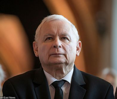 """Ujeżdżanie byków - ulubiona rozrywka (przed telewizorem) Jarosława Kaczyńskiego. Tym razem prezes """"ujeżdża"""" kilka równocześnie."""