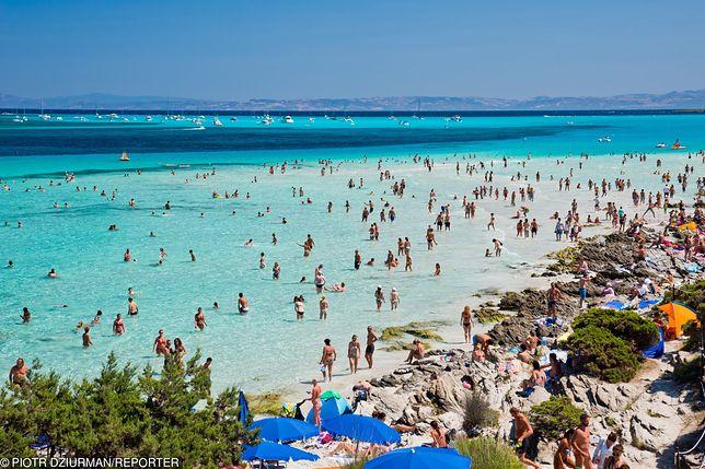 Plaża Spiaggia la d. Pelosa na Sardynii