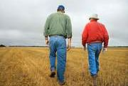 Dzierżawcy i posłowie krytycznie o ustawie o gospodarowaniu ziemią