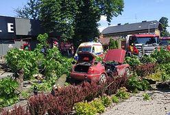 Żywiec. Drzewo runęło na jadący samochód. Matka z córką trafiły do szpitala