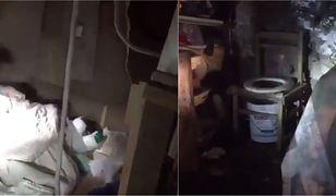 Mężczyzna przetrzymywał kobietę przez 10 lat w piwnicy swojego domu