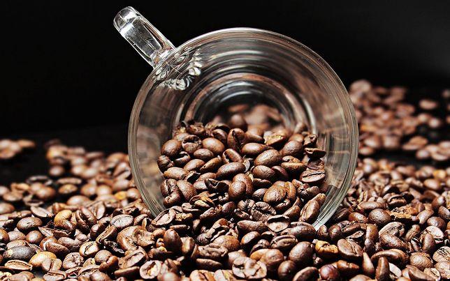 Kofeina może wpływać na strukturę mózgu