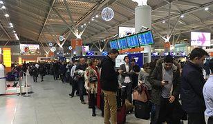 Lotnisko Chopina wciąż popularnie. Prawie 2 mln pasażerów w lipcu