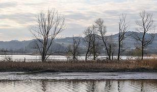 Dunajec. Wyłowiono ciało kobiety. Była poszukiwana (zdjęcie ilustracyjne)