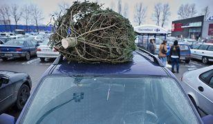 """Choinka na dachu samochodu? Zrób to tak, by nie """"zarobić"""" mandatu za 500 zł"""