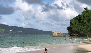 Wyspa Saona na południu Dominikany cieszy się sporą popularnością wśród turystów