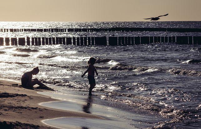 Sinice w morzu - dla bezpieczeństwa najlepiej śledzić bieżące komunikaty.