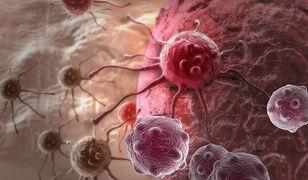 Światowy Dzień Walki z Rakiem - 4 lutego 2019