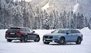 Volvo V90 Cross Country w zimowej scenerii z choinkami
