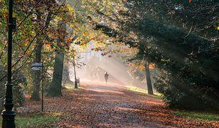 Jesień jak zwykle przyszłą za szybko