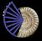 C.a.R. icon