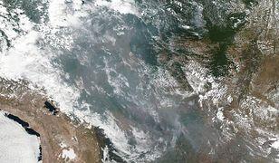 Dym unoszący się z pożarów w Amazonii widać z kosmosu