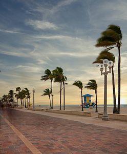 Strach i groza na Florydzie. Słońce, palmy i ciemna strona tropicznego raju