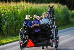 Amisze - wspólnota, która żyje bez dóbr cywilizacji