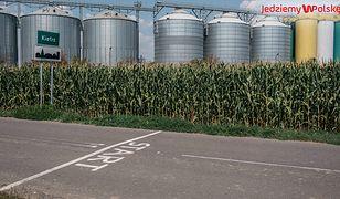 PGR w Kietrzu przetrwał. Jest dumą polskiego rolnictwa