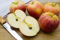Wielka moc zamknięta w małej pestce. Dlaczego nie warto wyrzucać nasion owoców?