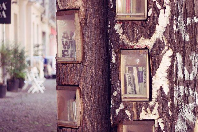 Lampy antydepresyjne na skwerze Wodiczki czy ekologiczna biblioteka w pniu drzewa?
