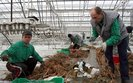 Polski rynek pracy nie jest przyjazny dla imigranta