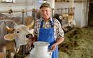 Rolnicy składają wnioski o wsparcie dla grup producenckich. Można dostać nawet 100 tys. euro