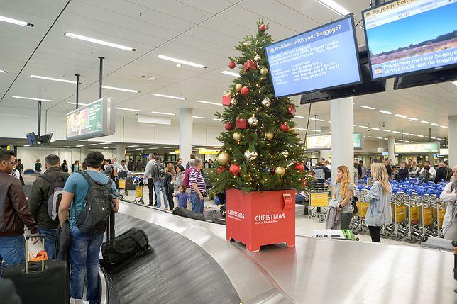 Samolotem w Boże Narodzenie? Zobacz, kiedy najlepiej kupić bilet