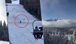 """Rumunia. Niedźwiedź gonił narciarza po stoku. """"Szybciej! Nie oglądaj się za siebie!"""""""