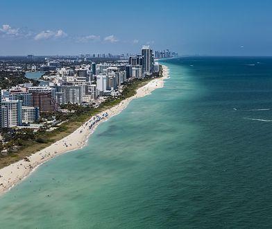 USA. Mieszkaniec Miami był o krok od śmierci. Mógł zostać pożarty przez rekina