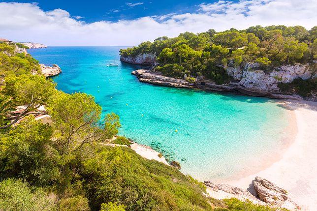 Do przykładowych atrakcji Majorki można zaliczyć park natury S'Albufera czy jaskinie Cuevas del Drach