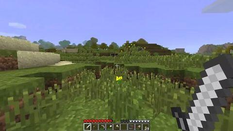 Jeden człowiek chce dojść na koniec świata Minecrafta... Po co?