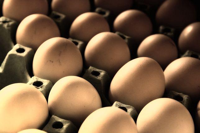 Salmonella w jajach sprzedawanych w Stokrotce (zdj. ilustracyjne).