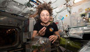 Astronauci hodują rośliny w kosmosie i z nadzieją patrzą w swoje kosmiczne sałatki