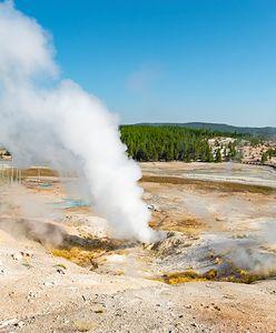 """Park Narodowy Yellowstone. Jego ogromna część """"pulsuje"""""""