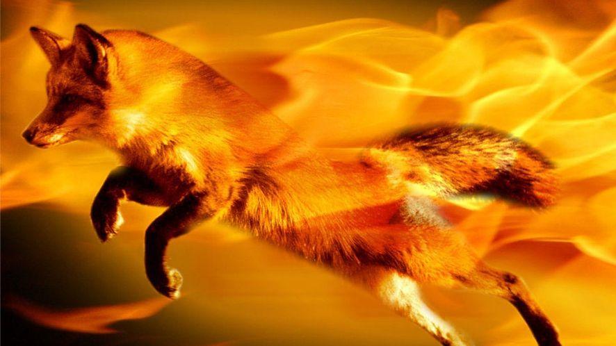 Nadchodzi 64-bitowy Firefox dla Windows