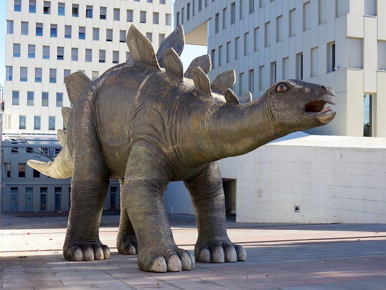 """Makabryczne odkrycie """"we wnętrzu"""" dinozaura. Znaleziono ludzkie zwłoki"""