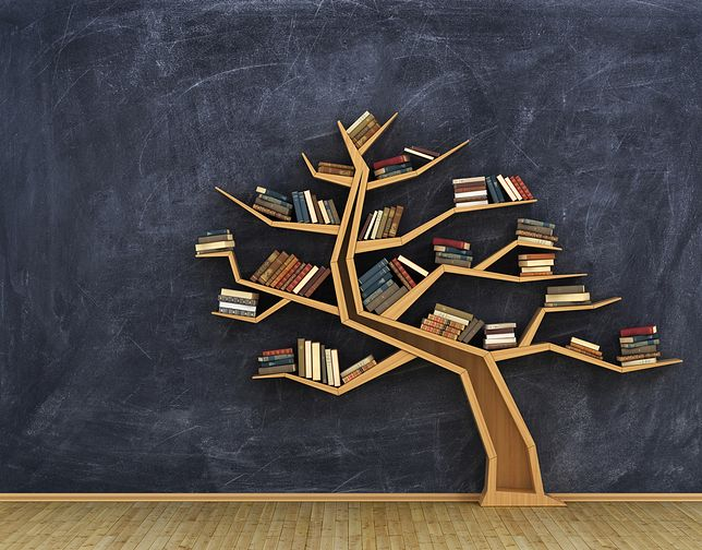 Efektowna półka z książkami może stać się piękną ozdobą mieszkania