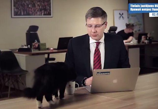 Kot wtargnął niespodziewanie na wizję. Pierwsza reakcja burmistrza Rygi? Bezcenna!