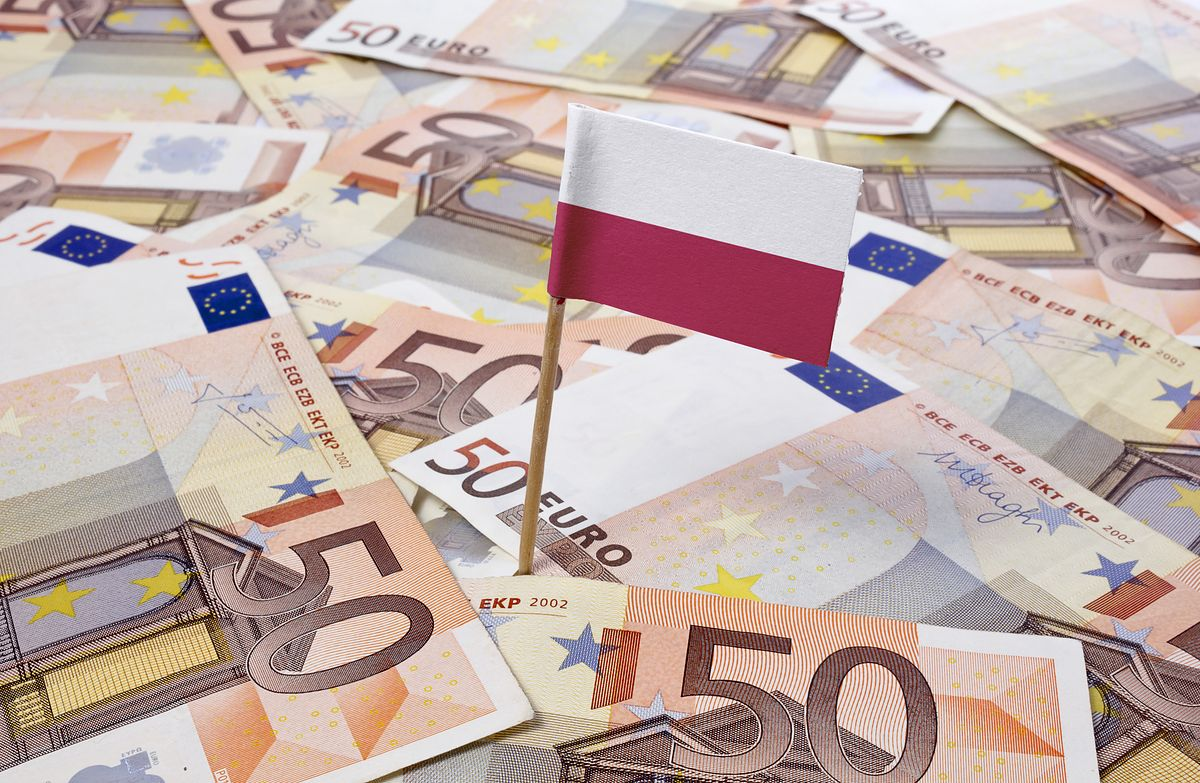 Perspektywy dla euro coraz jaśniejsze. Złoty lekko traci