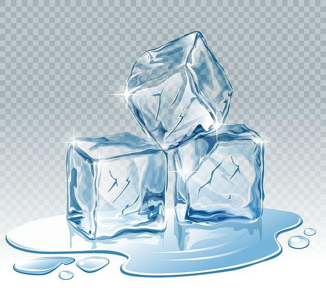 Kostkarka do lodu — wybieramy spośród trzech modeli